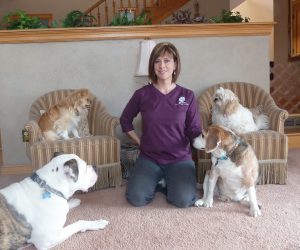 Carie Grant Denver dog training